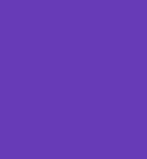 Овал это геометрическая фигура
